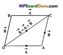 MP Board Class 11th Physics Important Questions Chapter 4 Motion in a Plane 6