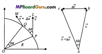 MP Board Class 11th Physics Important Questions Chapter 4 Motion in a Plane 9