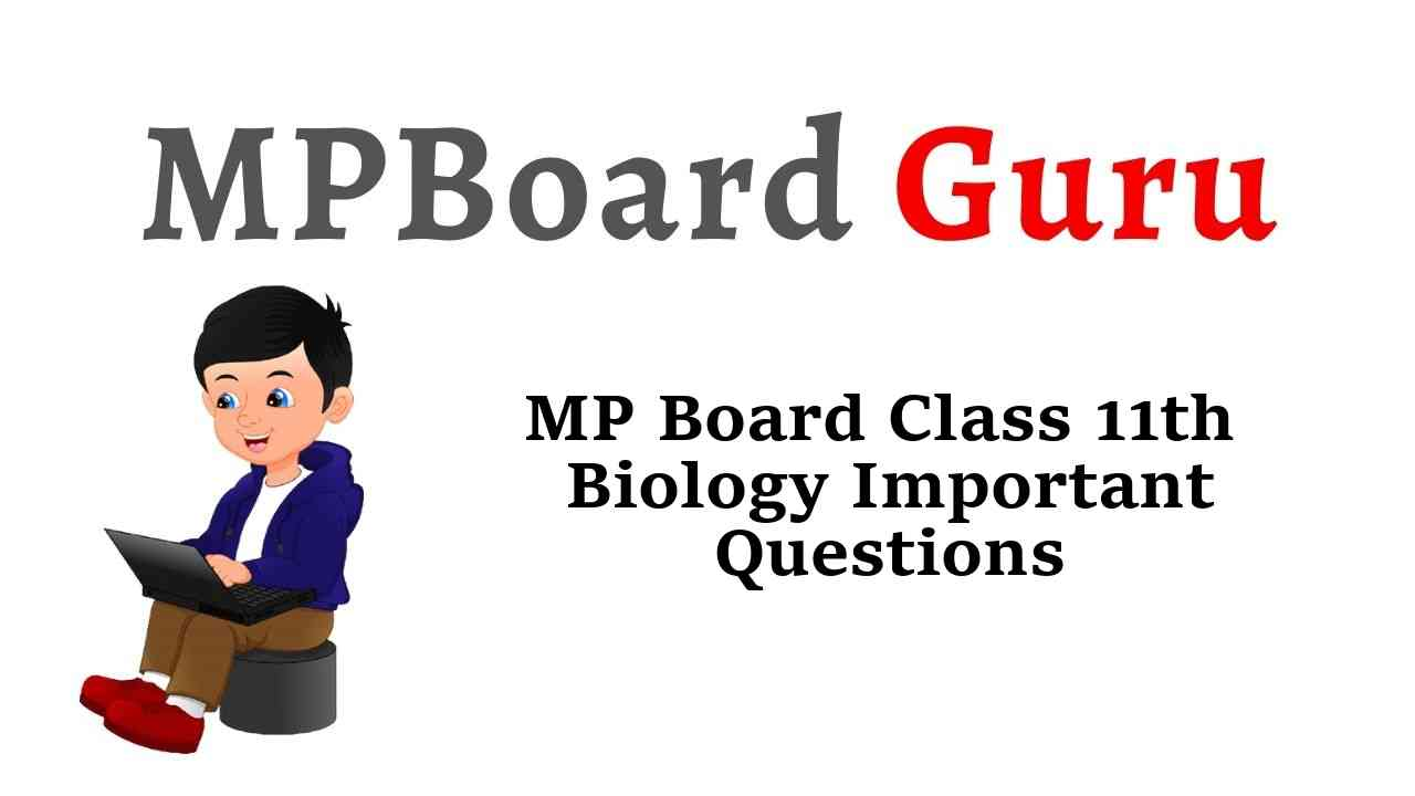 MP Board Class 11th Biology Important Questions with Answers