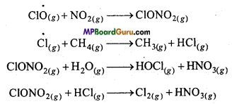 MP Board Class 11th Chemistry Important Questions Chapter 14 Environmental Chemistry 11