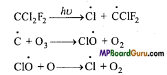 MP Board Class 11th Chemistry Important Questions Chapter 14 Environmental Chemistry 5