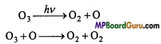 MP Board Class 11th Chemistry Important Questions Chapter 14 Environmental Chemistry 9
