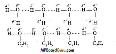 MP Board Class 11th Chemistry Important Questions Chapter 4 Chemical Bonding and Molecular Structure32