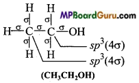 MP Board Class 11th Chemistry Important Questions Chapter 4 Chemical Bonding and Molecular Structure45