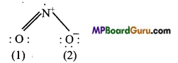 MP Board Class 11th Chemistry Important Questions Chapter 4 Chemical Bonding and Molecular Structure53