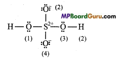 MP Board Class 11th Chemistry Important Questions Chapter 4 Chemical Bonding and Molecular Structure54