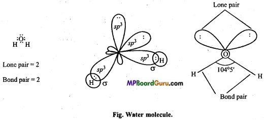 MP Board Class 11th Chemistry Important Questions Chapter 4 Chemical Bonding and Molecular Structure81