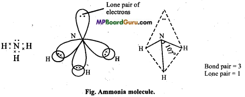 MP Board Class 11th Chemistry Important Questions Chapter 4 Chemical Bonding and Molecular Structure82