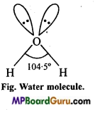 MP Board Class 11th Chemistry Important Questions Chapter 4 Chemical Bonding and Molecular Structure84