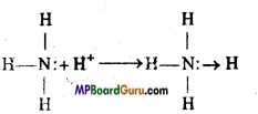 MP Board Class 11th Chemistry Important Questions Chapter 7 Equilibrium 1