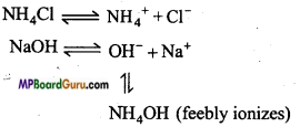 MP Board Class 11th Chemistry Important Questions Chapter 7 Equilibrium 23