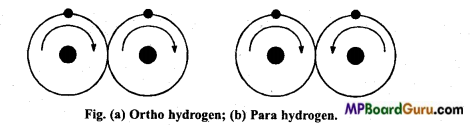 MP Board Class 11th Chemistry Important Questions Chapter 9 Hydrogen 15