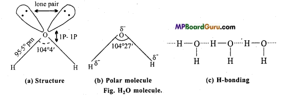 MP Board Class 11th Chemistry Important Questions Chapter 9 Hydrogen 33
