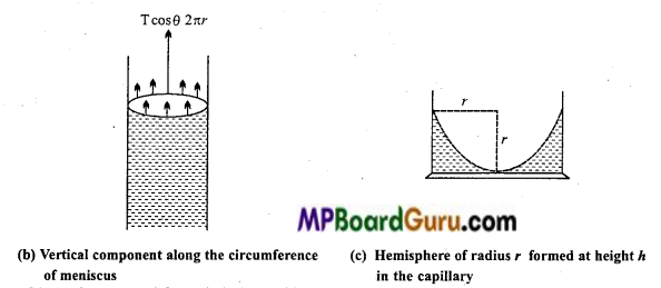 MP Board Class 11th Physics Important Questions Chapter 10 Mechanical Properties of Fluids 18