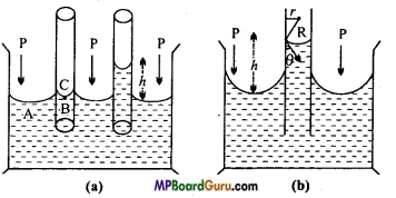 MP Board Class 11th Physics Important Questions Chapter 10 Mechanical Properties of Fluids 8