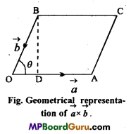 MP Board Class 11th Physics Important Questions Chapter 6 Work, Energy and Power 2