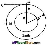 MP Board Class 11th Physics Important Questions Chapter 8 Gravitation 10