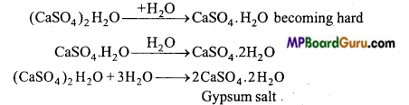 MP Board Class 11th Chemistry Important Questions Chapter 10 The s-Block Elements 1