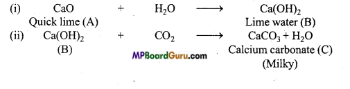 MP Board Class 11th Chemistry Important Questions Chapter 10 The s-Block Elements 26