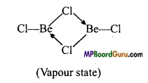 MP Board Class 11th Chemistry Important Questions Chapter 10 The s-Block Elements 9