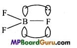 MP Board Class 11th Chemistry Important Questions Chapter 11 The p-Block Elements 23