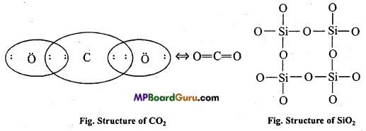 MP Board Class 11th Chemistry Important Questions Chapter 11 The p-Block Elements 26