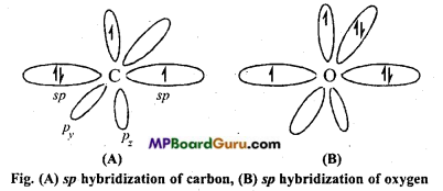 MP Board Class 11th Chemistry Important Questions Chapter 11 The p-Block Elements 27